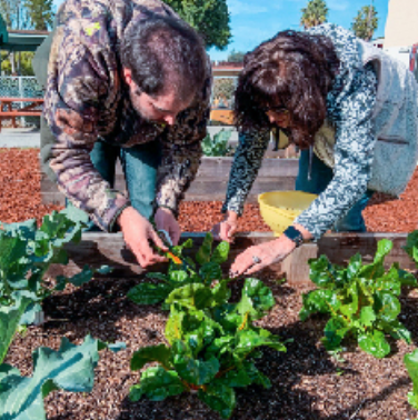 Special needs adult gardening with teacher